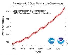 Grafik 3. Pasifik'teki Manua Loa İstasyonu'nda ölçülen C02 değerleri